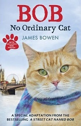Bob: No Ordinary Cat, Bowen, James